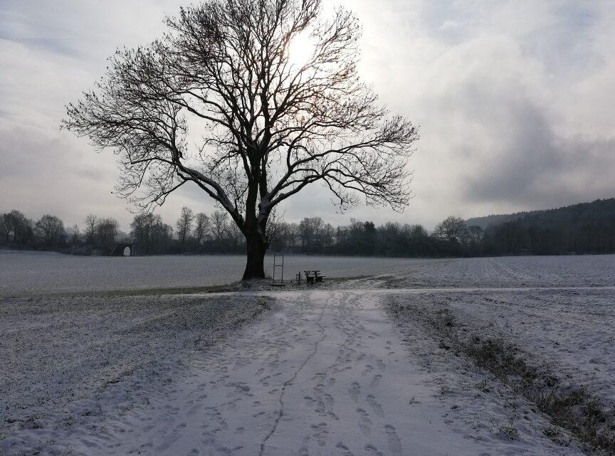 Gruß aus dem Schnee